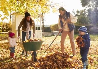 Jak si užít podzimní zahradu?