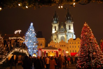 Hledá se vánoční strom!