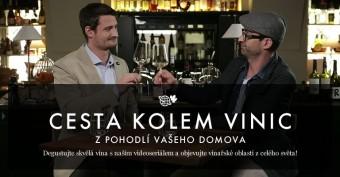 Cesta kolem vinic