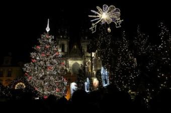 Vánoční strom pro Prahu přijede letos z Benešovska