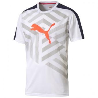fotbalové triko PUMA evoTRG Graphic Tee
