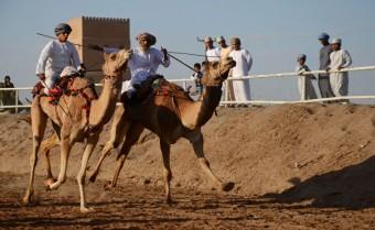 Ománské velbloudí dostihy, foto: www.photo-svoboda.cz
