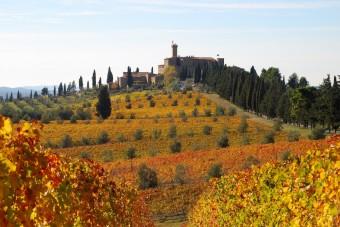 Banfi Castello, Itálie; Premier Wines & Spirits