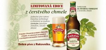 Bakalář světlý ležák chmelený za studena čerstvým chmelem, Tradiční pivovar v Rakovníku