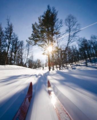 Běh na lyžích je v módě; ilustrační foto: Dreamstime.com