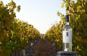 Viña Leyda, Sauvignon Blanc, foto: Premier Wines & Spirits