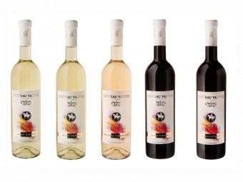 Svatomartinská vína, Château Valtice – Vinné sklepy Valtice