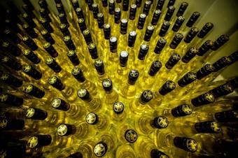 Foto kredit: Zámecké vinařství Bzenec