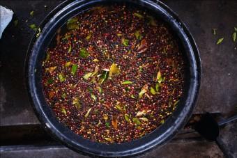 Nespresso představuje Explorations 3, kávu GALAPAGOS SANTA CRUZ