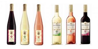 Svatomartinská vína Habánské sklepy a Víno Mikulov