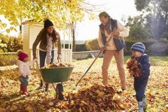 Ilustrační snímek, zdroj: Monkey Business Images / Shutterstock.com