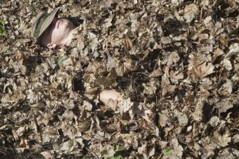 Jak přespat v přírodě bez spacáku? Stačí trocha suchého listí a pořádný pelech je připraven! Instruktor z Outdoor Survival pro nás nafotil, jak na to. Vypadá to celkem pohodlně, nemyslíte? :-)