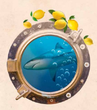81. festival citronů
